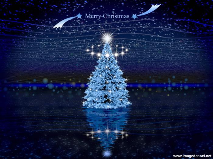 Bonne fêtes 2012 sapin-bleu